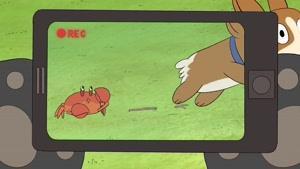 انیمیشن سه خرس کله پوک دوبله فارسی فصل 2 قسمت چهارده