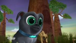 انیمیشن Puppy Dog Pals فصل 2 قسمت هشت