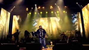 اجرای زنده ی آهنگ عاشقتم از رضا صادقی