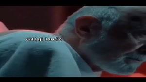 بهترین سکانس فیلم  بادیگارد