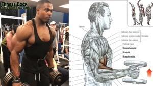 آموزش عضلانی کردن جلو بازو با سیمون پاندا