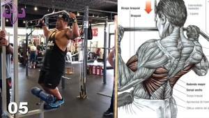 تمرین بدنسازی برای عضلات زیربغل و پشت