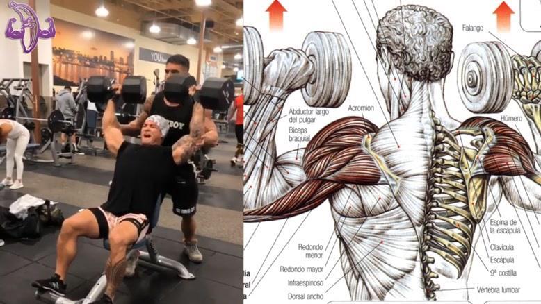 آموزش 10 تمرین برای سرشانه و جلو بازو