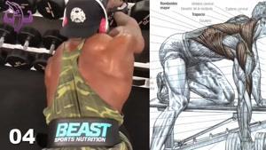 آموزش 10 تمرین برای عضلانی کردن پشت و کمر و زیر بغل