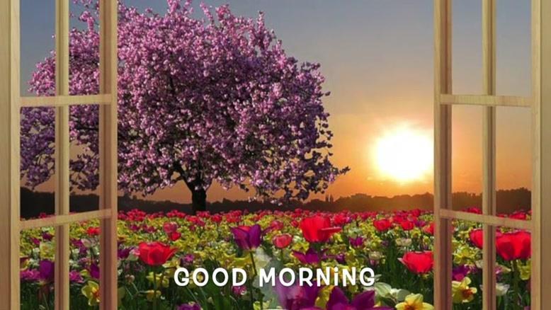 عبارتهای تاکیدی روزانه برای آغاز صبحی زیبا