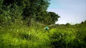 انیمیشن زندگی خصوصی حشرات فصل 1 قسمت هفتاد و پنج