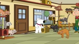 انیمیشن سریالی Family Guy