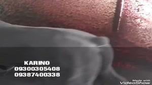 دستگاه مخمل پاش /اموزش مخمل پاشی /پودر مخمل ترک 02136472306