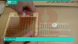 حرفه ای ترین های زنبورداری ایران قسمت 1