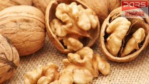 در فصل پاییز چه مواد غذایی را مصرف کنیم ؟