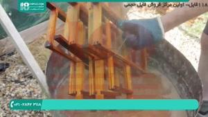 فیلم آموزش زنبورداری به زبان فارسی