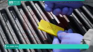 دوره آموزش زنبورداری بصورت کامل و دوبله فارسی _ www.118file.com