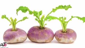 درمان سنگ کلیه و مثانه با این ریشه گیاهی