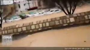 ویدیویی هولناک از سیل در جاده ساحلی رودخانه خشک شیراز