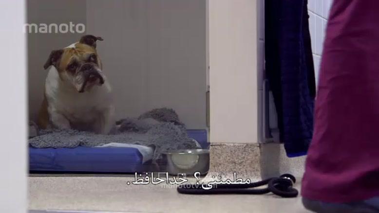 برنامه سوپر کلینیک حیوانات با زیر نویس فارسی قسمت پانزده