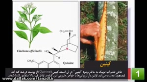 dalfak.com - گیاهان دارویی که معجزه میکنند!
