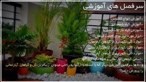آموزش پرورش و نگهداری گل و گیاهان آپارتمانی از 0 تا 100