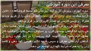 ۱۰ترفند پروررش گل و گیاه آپارتمانی