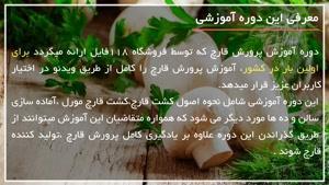 ترفندهای آموزشی برای پرورش قارچ خوراکی در منزل
