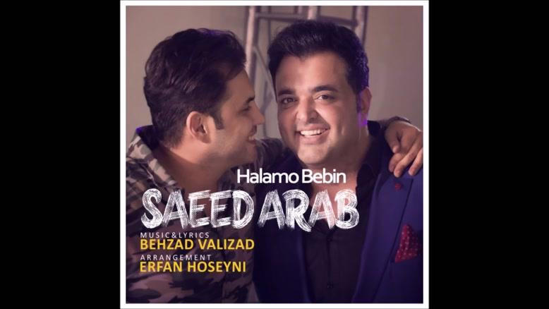 آهنگ حالمو ببین از سعید عرب