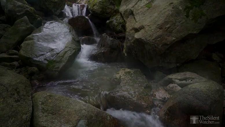 فیلم  از طبیعت زیبا و آرام بخش شماره ۱