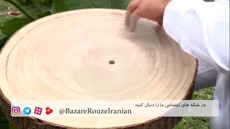 پالونیا ، سریعترین درخت روی زمین برای پول در آوردن!