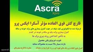 آسکرا ایکس پرو | Ascra xpro قارچ کش بی همتا در مبارزه با آفات گندم