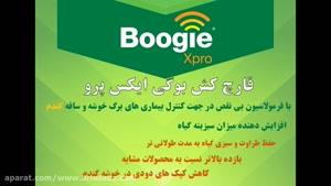 ضد قارچ صد درصد تضمینی برای گندم بوگی ایکس پرو |  Boogie xpro