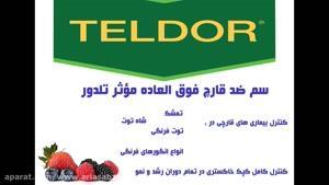 قارچ کش خارجی و بسیار با کیفیت تلدور | teldor مناسب انگور و توت فرنگی