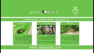 Hatrta | علف کش صددرصد تضمینی مزارع گندم زمستانه