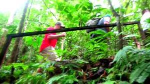 طبیعت گردی در کاستاریکا