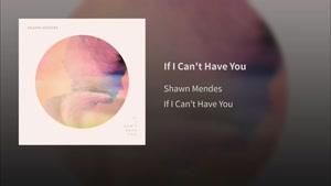 آهنگ Shawn Mendes به نام If I Can&#۱۴۶t Have You