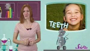 برنامه آموزش زبان انگلیسی SCISHOW KIDS  قسمت پنجاه
