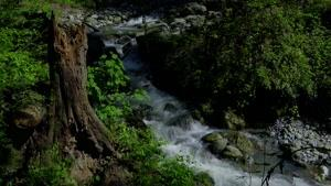 کوهستان البرز و طبیعت بهاری خیره کننده آن