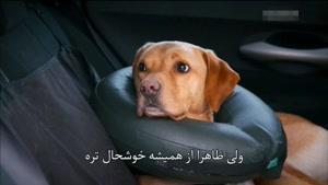 برنامه سوپر کلینیک حیوانات با زیر نویس فارسی قسمت 9