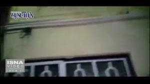 نماشا - ملخها به ۱۰۰ کیلومتری تهران رسیدند