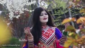 آهنگ پاکتیا خواننده افغان لیلا نهال