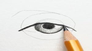 نقاشی هایی که از سطح مبتدی به حرفه ای تبدیل میشوند