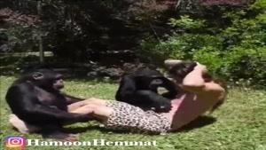 صدا گذاری خنده دار بدنسازی با شامپازده