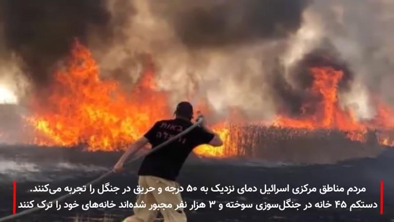 گرما و آتش سوزی بی سابقه در اسرائیل