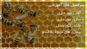 آموزش کامل زنبورداری - www.۱۱۸file.com