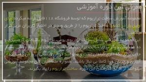 ساخت آکواریوم گیاهی رمانتیک