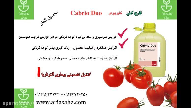قارچ کش اختصاصی گوجه فرنگی   صددرصد تضمینی   Cabrio Duo