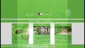 Variano Xpro | قارچ کش اختصاصی  خوشه تریتیکاله | صددرصد تضمینی