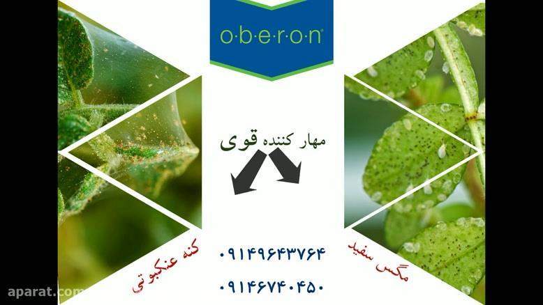 حل ریشه ای معضل کنه های درختی با، سم کنه کش اُبرون   Oberon