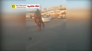 حضور مجدد افرادی با لباس و اسب امام زمان در کازرون