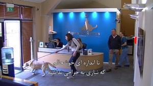برنامه سوپر کلینیک حیوانات با زیر نویس فارسی قسمت ۱۷