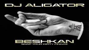 دانلود آهنگ جدید DJ Aligator دیجی علی گیتور به نام بشکن