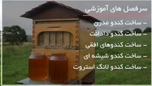 قاب کندو زنبور عسل