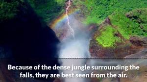 فیلم  از طبیعت زیبا  و  آرام بخش شماره ۳۶